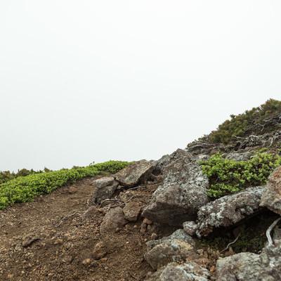「辺りが霧で真っ白な登山道」の写真素材