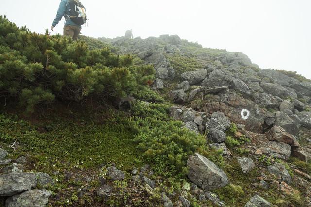 険しい岩場を歩く(乗鞍新登山道)の写真