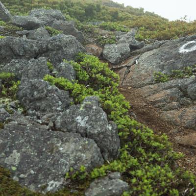 「乗鞍新登山道(硫黄岳付近)」の写真素材
