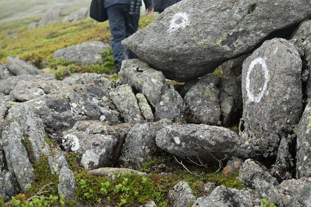 岩場にマークされた登山道の写真