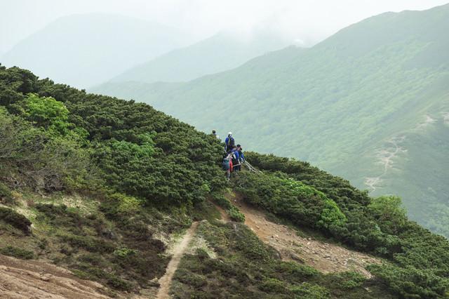 乗鞍新登山道の斜面の写真