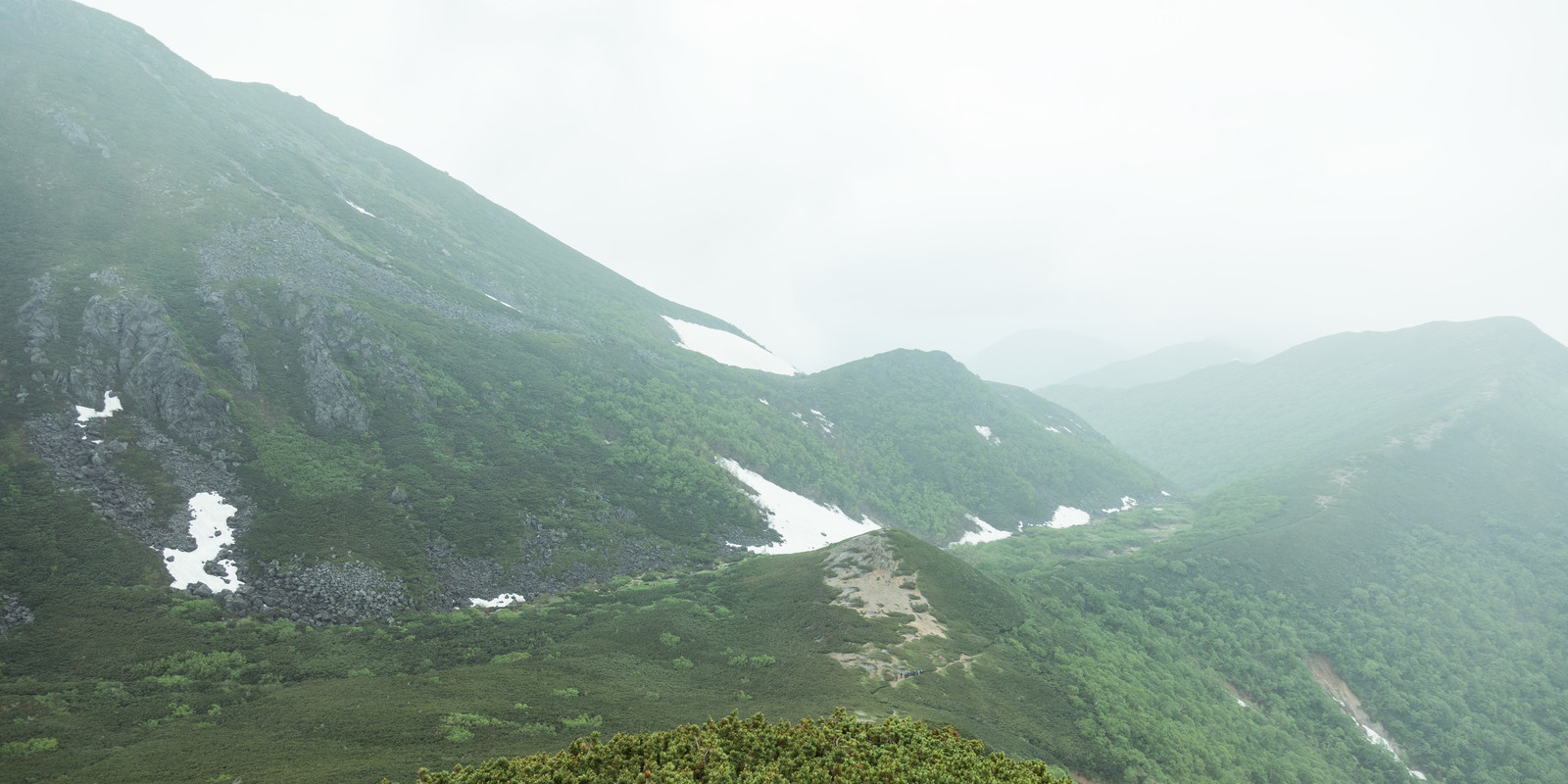 「霧(ガスる)が多くて全景を楽しむことができない乗鞍新登山道」の写真