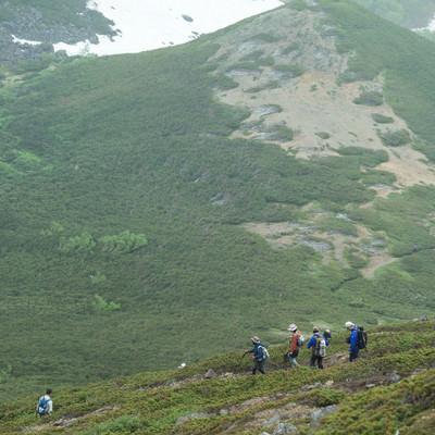 「班ごとに下山する登山者」の写真素材