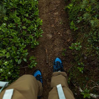 「雨が降って泥濘んだ足元(乗鞍新登山道)」の写真素材