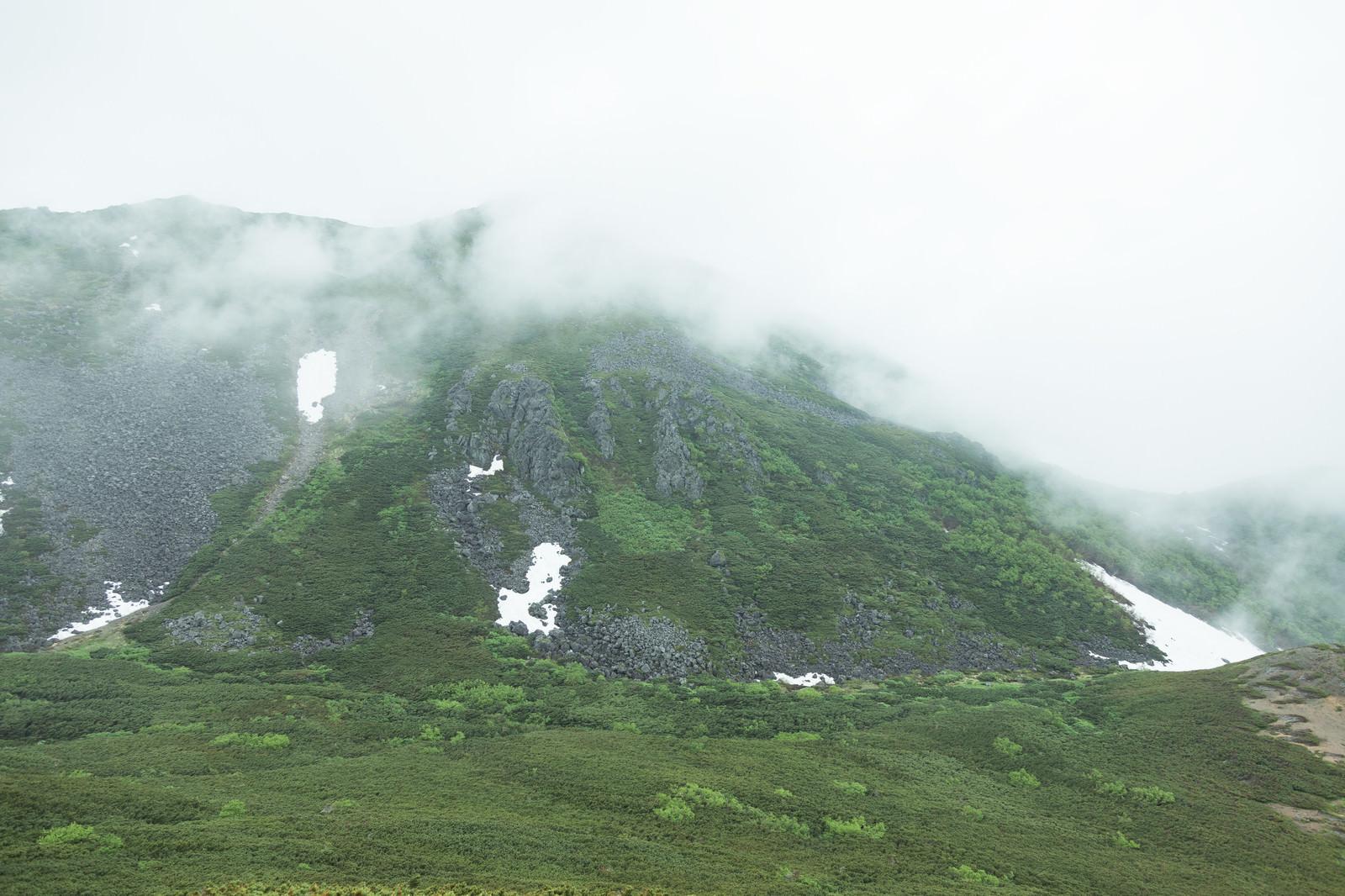 「ガスった山もいい雰囲気」の写真