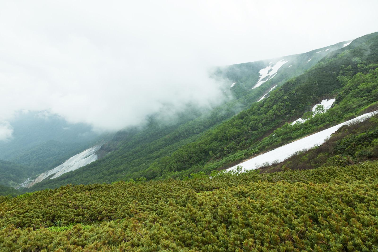 「霧と渓谷の様子」の写真