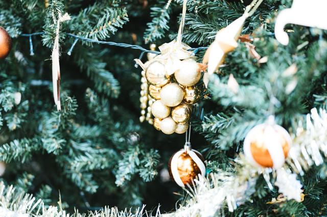 xmas tree(クリスマスツリー)の写真