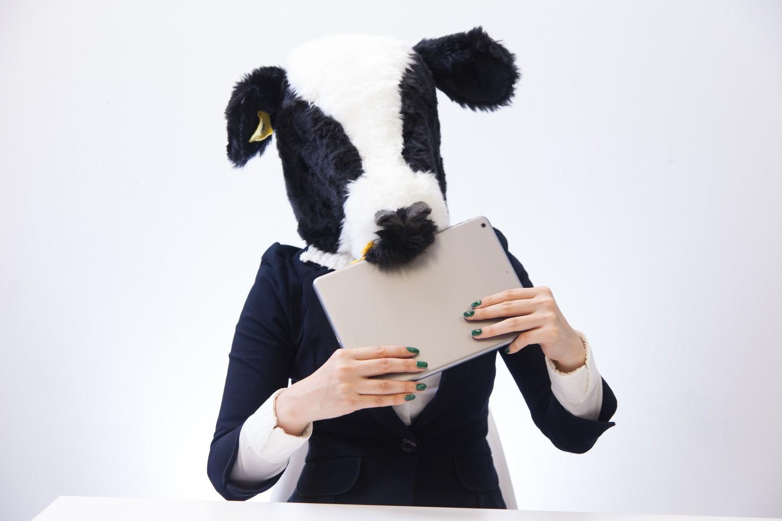 「牧草の写真を見せたらタブレットごと食べ始めた牛女」の写真[モデル:古性のっち]
