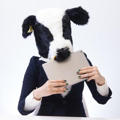 「牧草の写真を見せたらタブレットごと食べ始めた牛女」の写真素材