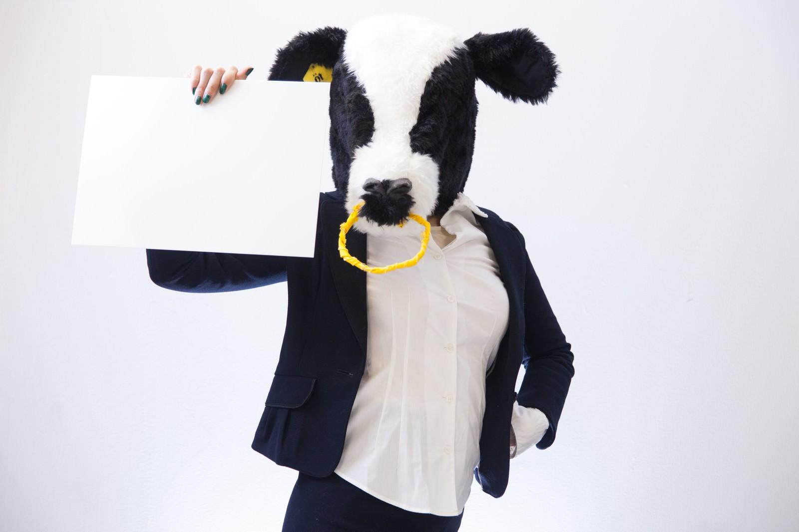 「フリップを見せる牛女」の写真[モデル:古性のっち]