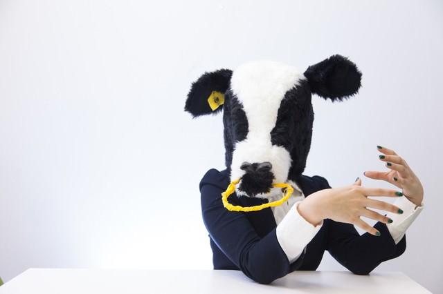 人事担当の牛にダメ出しされるの写真