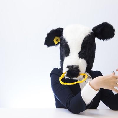 「人事担当の牛にダメ出しされる」の写真素材