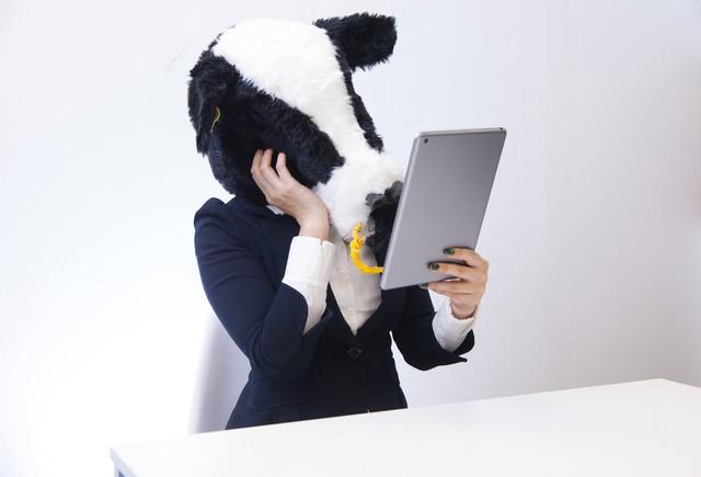 自分の姿にうっとりするエト牛の写真