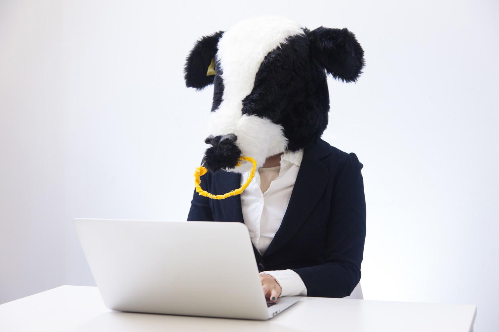 「経理担当エト牛」の写真[モデル:古性のっち]