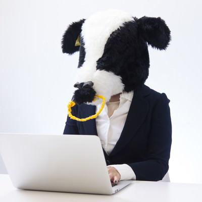 「経理担当エト牛」の写真素材