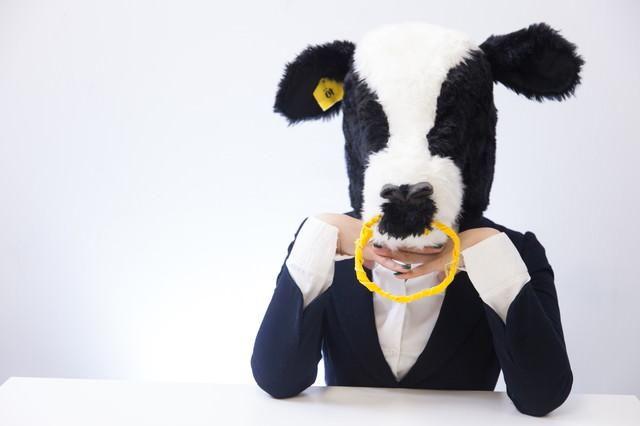 恋するエト牛の写真
