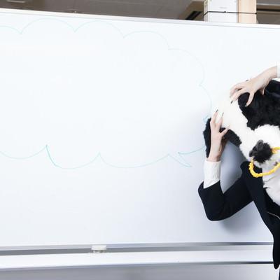 「完全に行き詰まって頭を抱える牛女」の写真素材