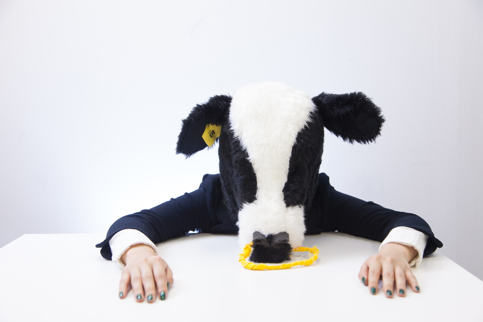 「人間社会に消耗して力尽きた牛コンサルタント人間社会に消耗して力尽きた牛コンサルタント」[モデル:古性のっち]のフリー写真素材を拡大
