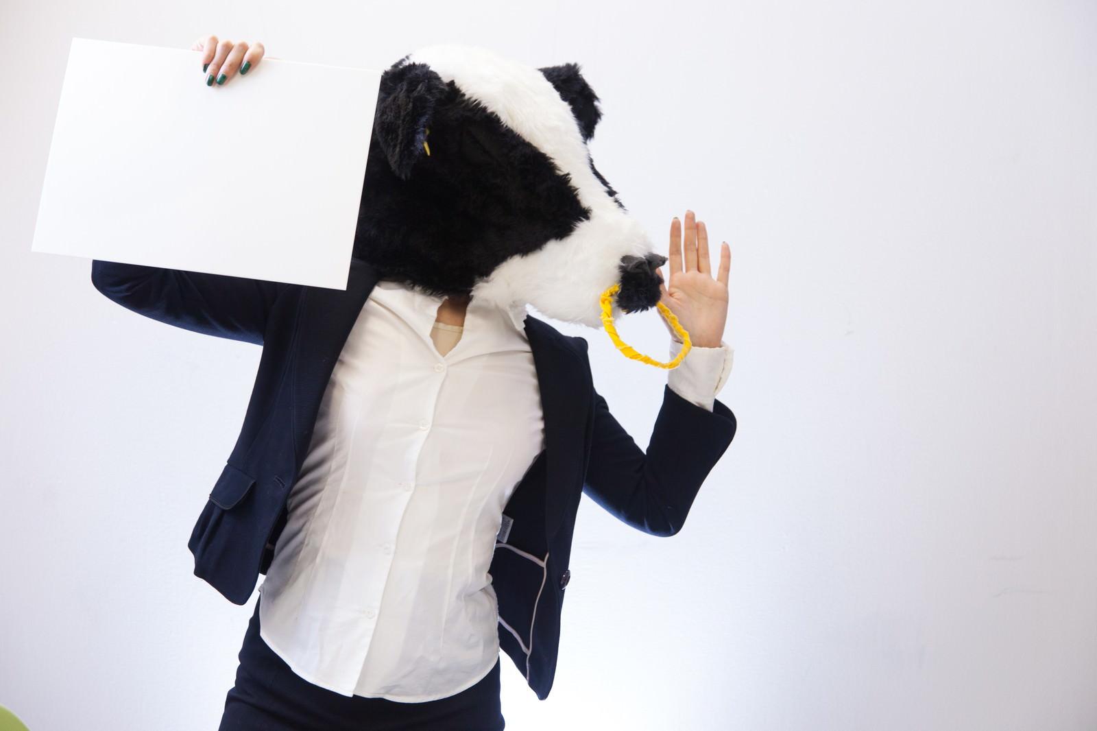 「テロップ掲げて叫ぶ牛さん」の写真[モデル:古性のっち]