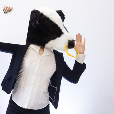 「テロップ掲げて叫ぶ牛さん」の写真素材