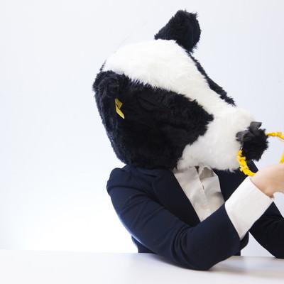 「ろくろ回しを練習するWeb系の牛部長」の写真素材