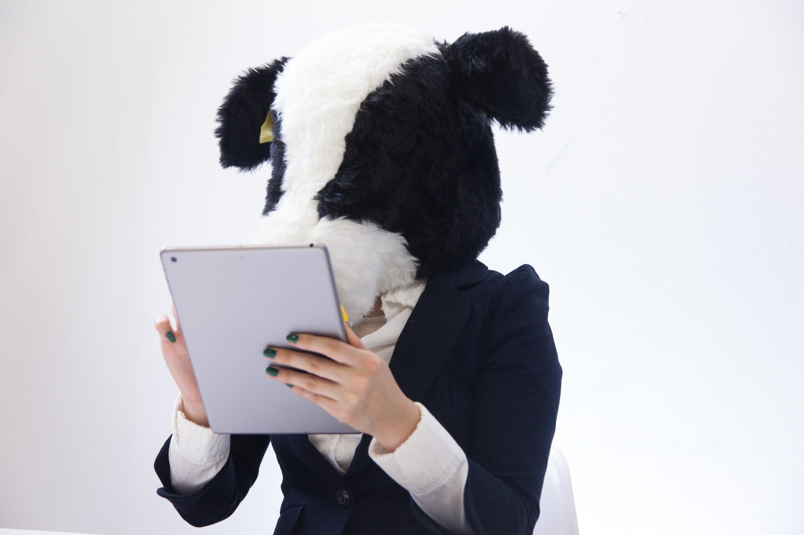 「スキャンした冊数をタブレットで確認する牛さんスキャンした冊数をタブレットで確認する牛さん」[モデル:古性のっち]のフリー写真素材を拡大