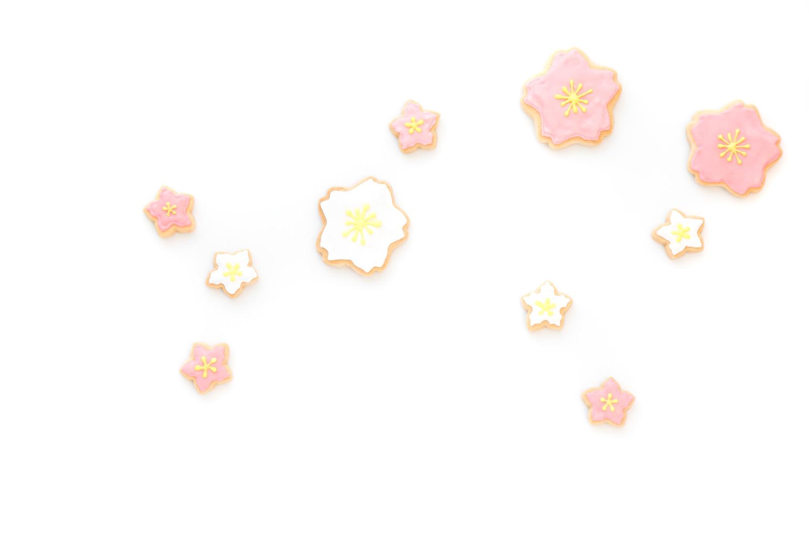 「梅花クッキー」の写真