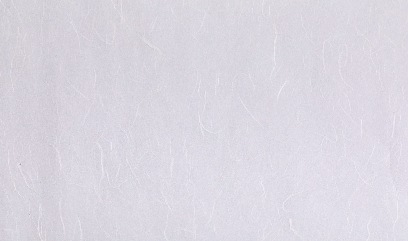 「白い繊維の和紙(テクスチャ)」の写真