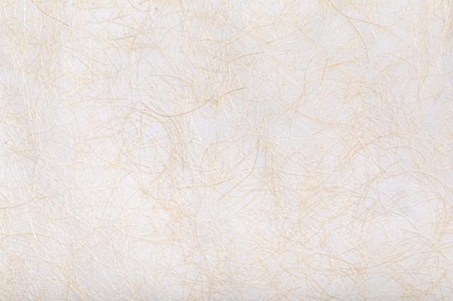 茶色の繊維が絡む和紙の写真
