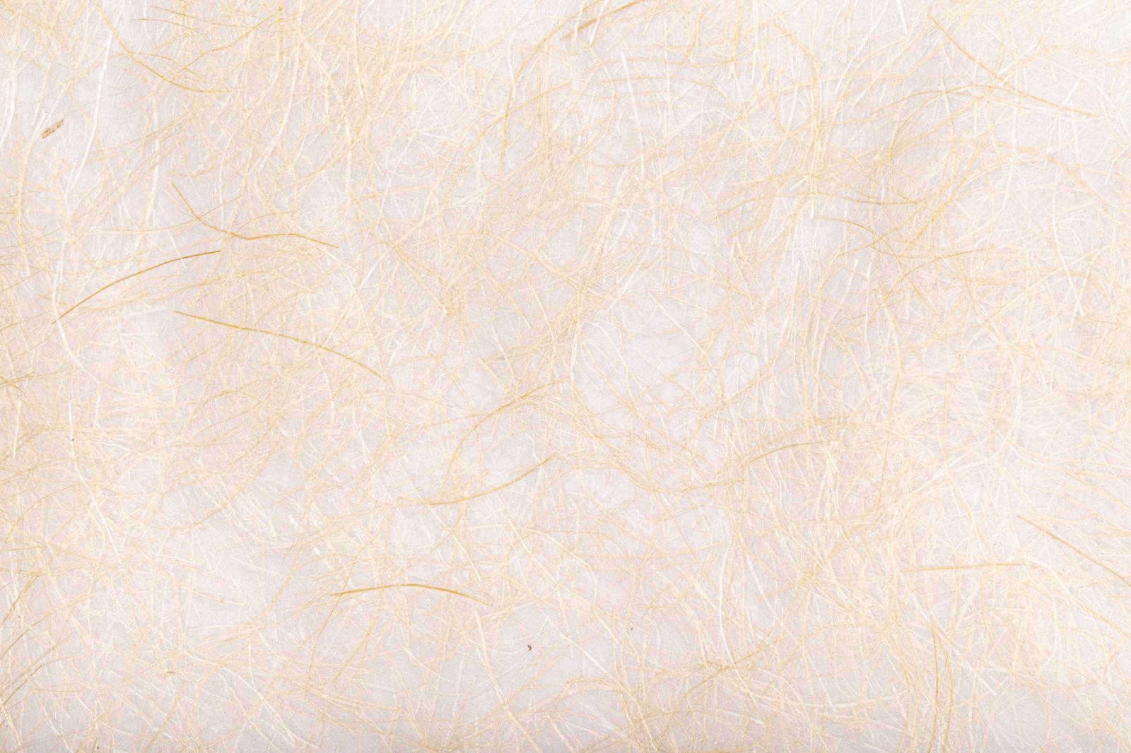 「繊維が多い和紙(テクスチャ)」の写真