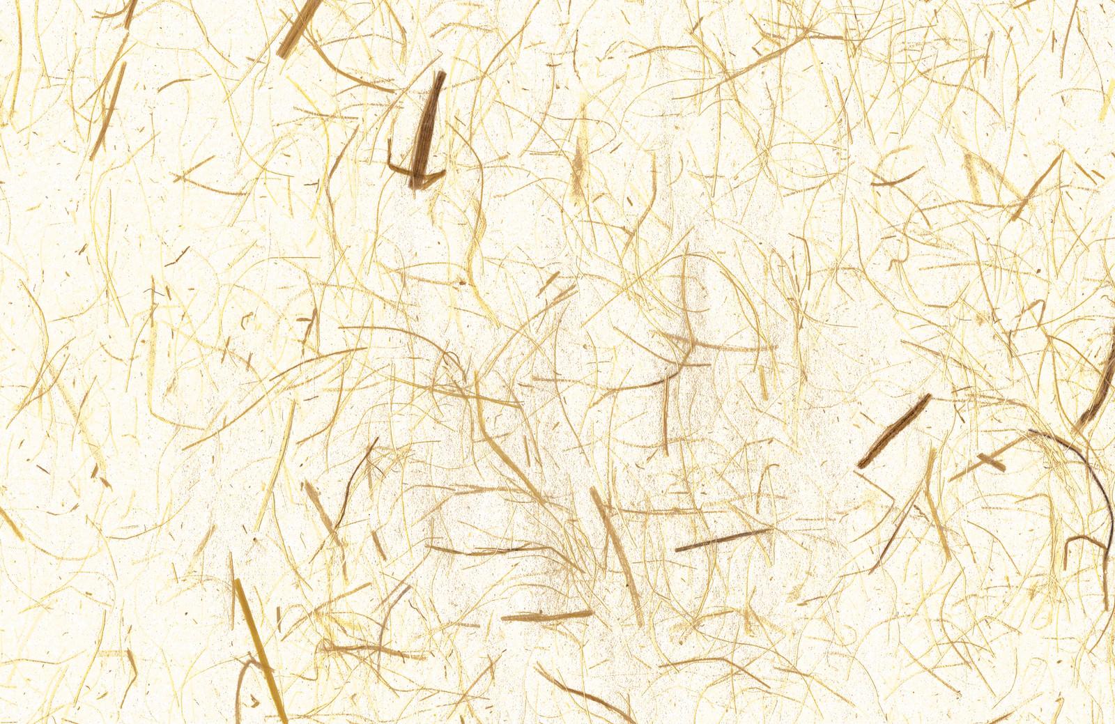 「土壁のような和紙」の写真