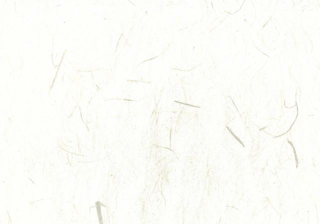 かすれた和紙の写真
