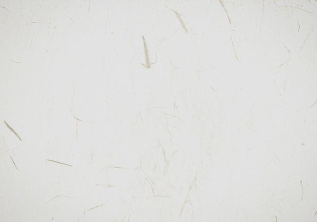 和紙のテクスチャの写真