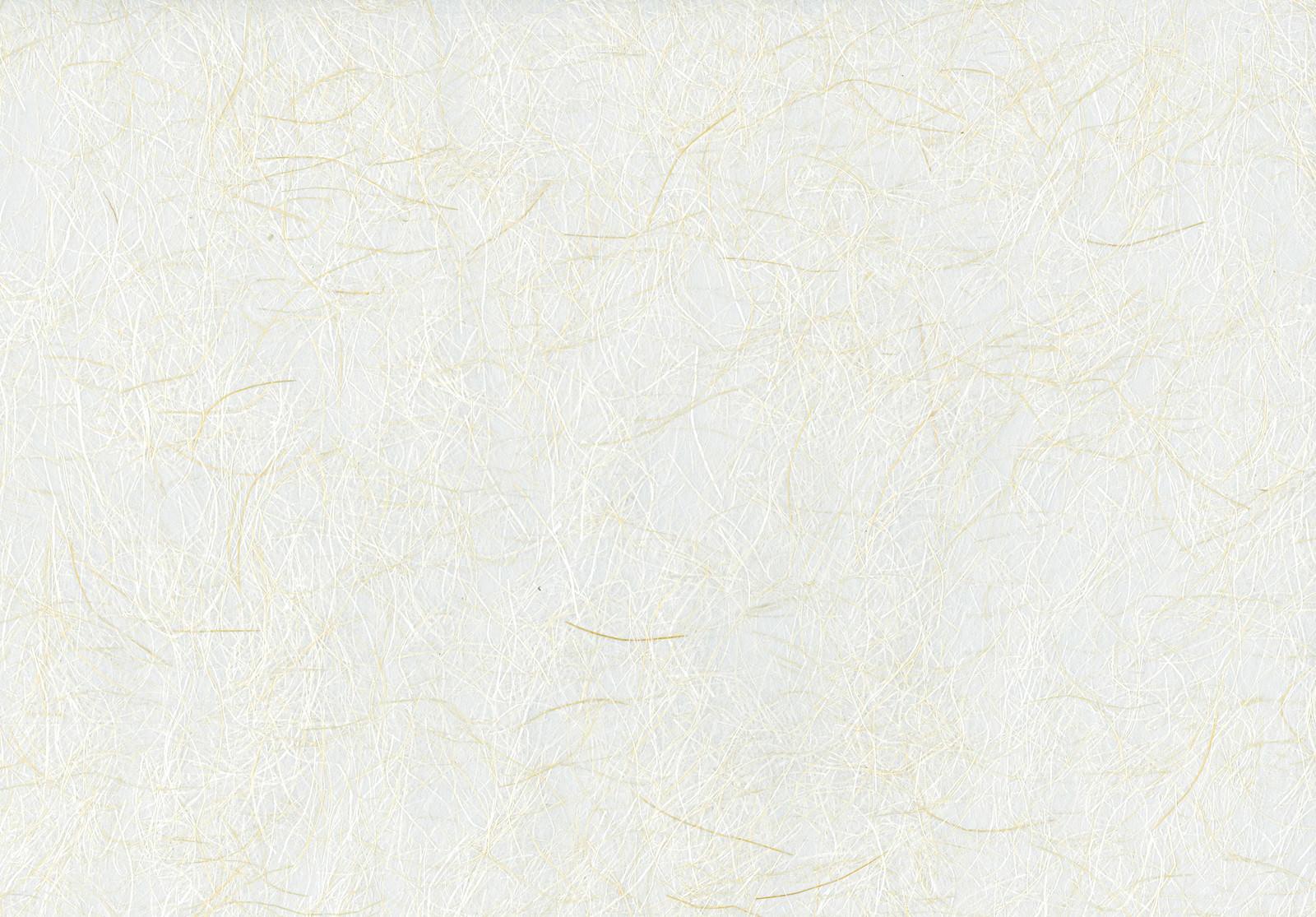 「繊維入り和紙(テクスチャ)」の写真