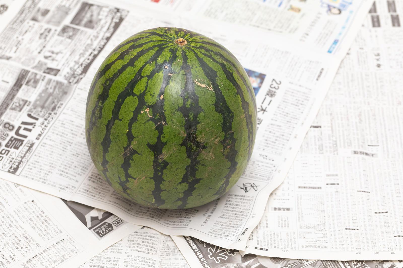 「西瓜一玉」の写真
