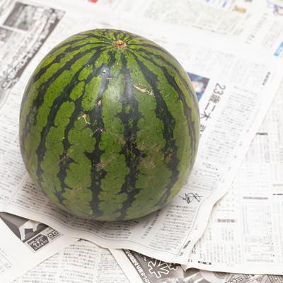 西瓜一玉の写真