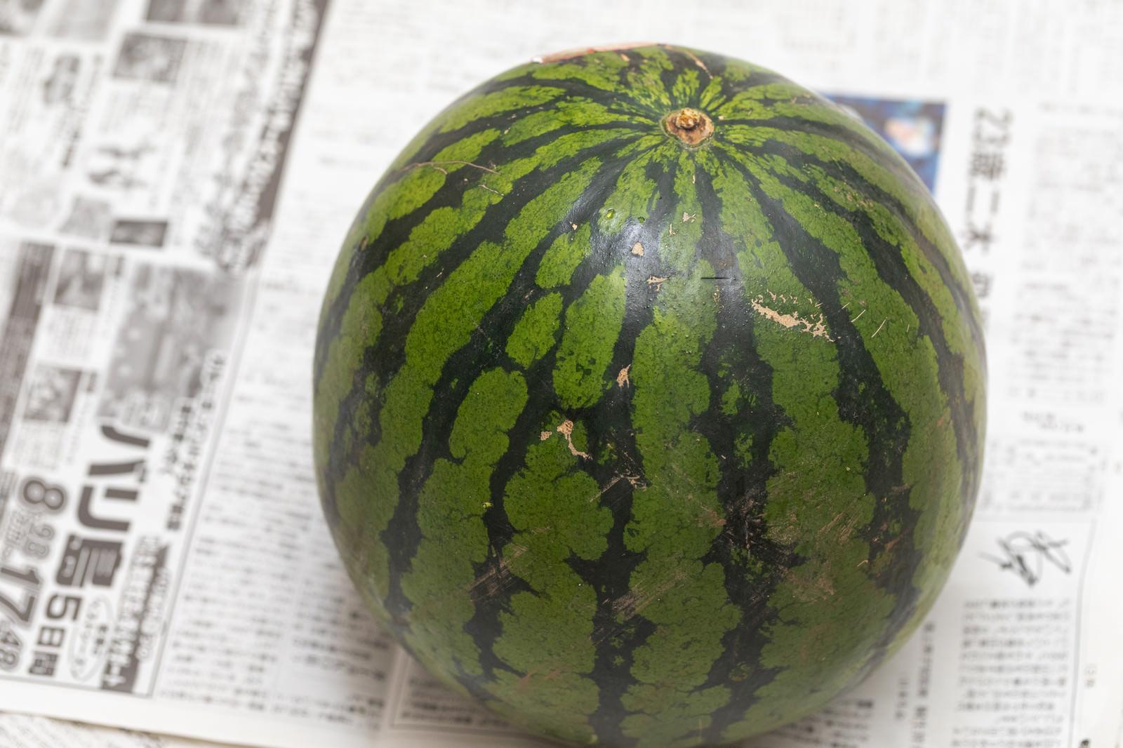 「西瓜(すいか)」の写真