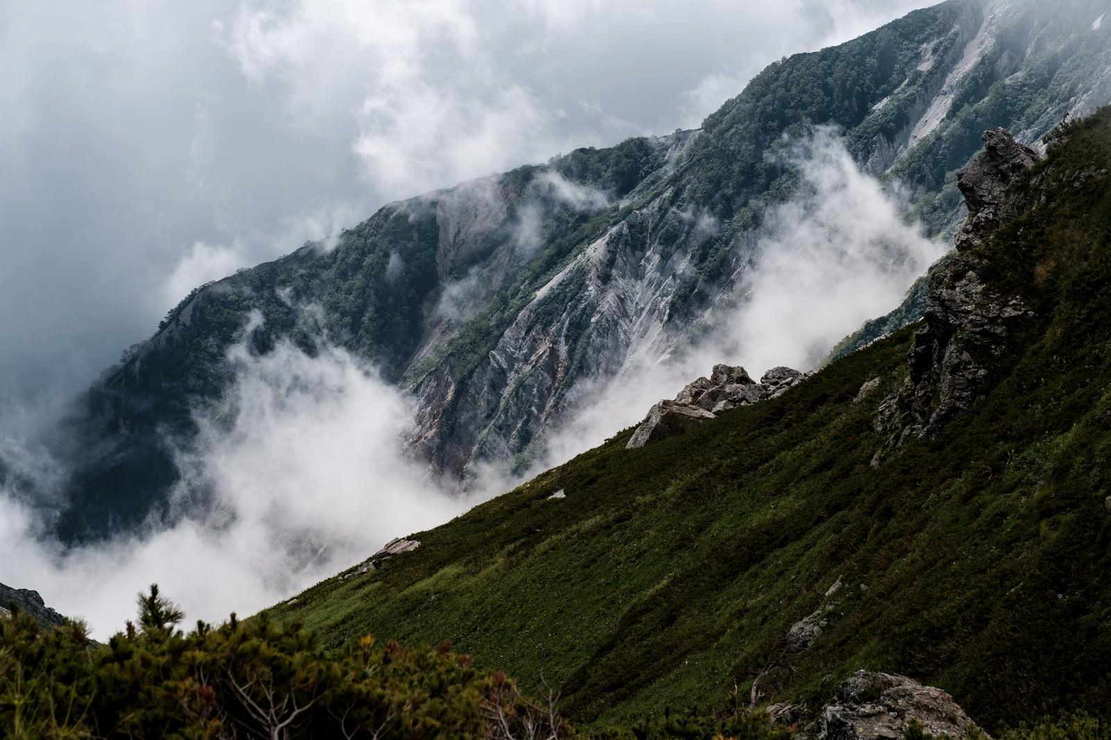 「朝霧が経つ白馬連峰」の写真