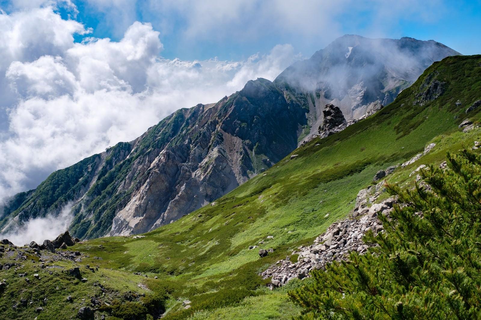 「白馬(しろうまだけ)にある山々」の写真