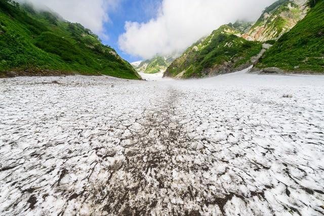 遥かに続く白馬大雪渓(白馬岳)の写真