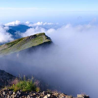 雲海に浮かびあがる白馬連峰の写真