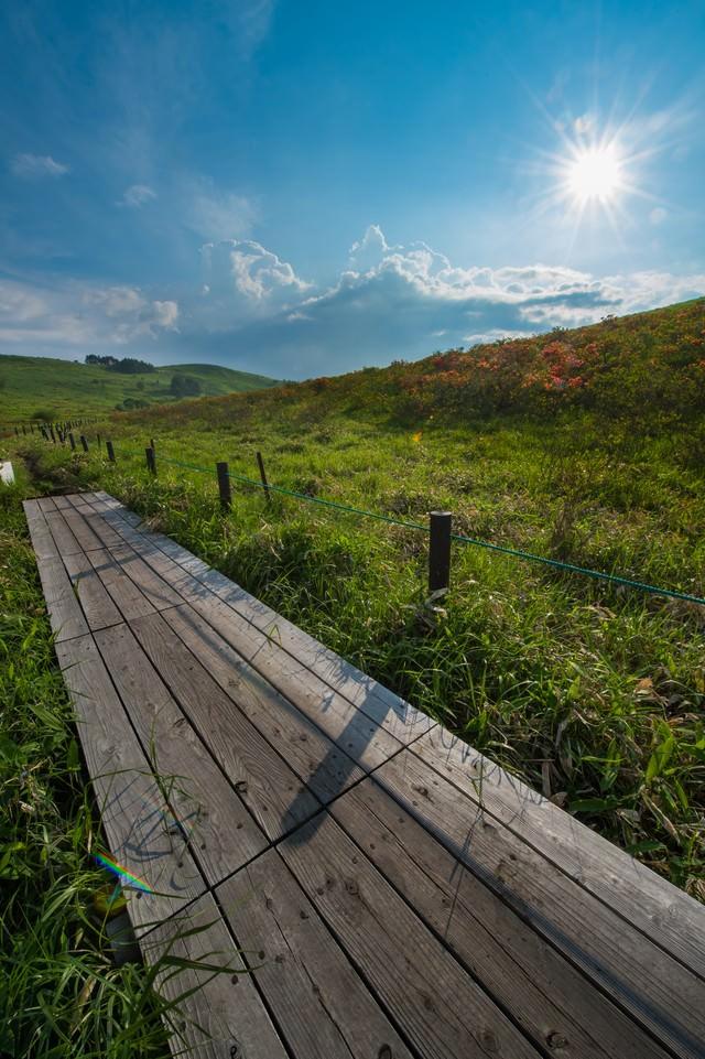 夏の雲と車山高原の写真