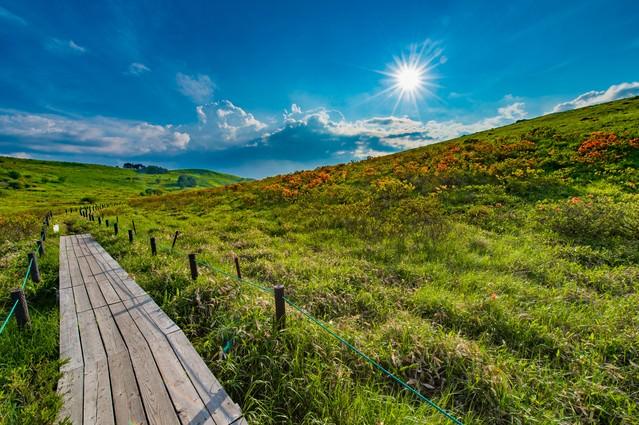 車山高原のハイキングコースの写真
