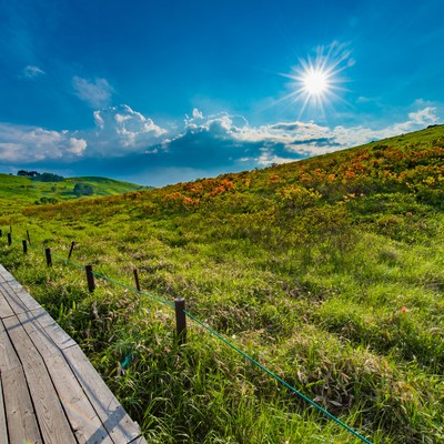 「車山高原のハイキングコース」の写真素材