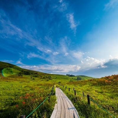 「空が広い標高2000mのハイキングコース(車山高原)」の写真素材
