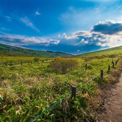 「景観を楽しみながらハイキング(車山の遊歩道)」の写真素材