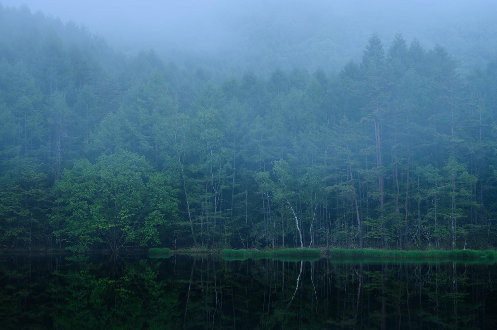 「霧と御射鹿池」の写真