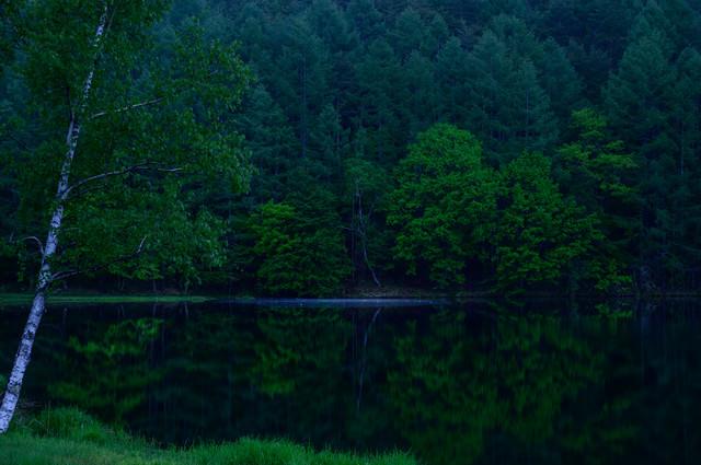 新緑の御射鹿池の写真