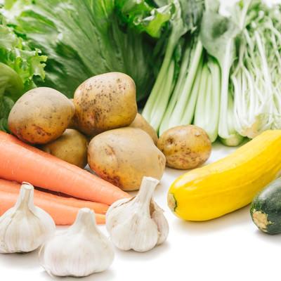 「大刀洗の採れたて野菜」の写真素材