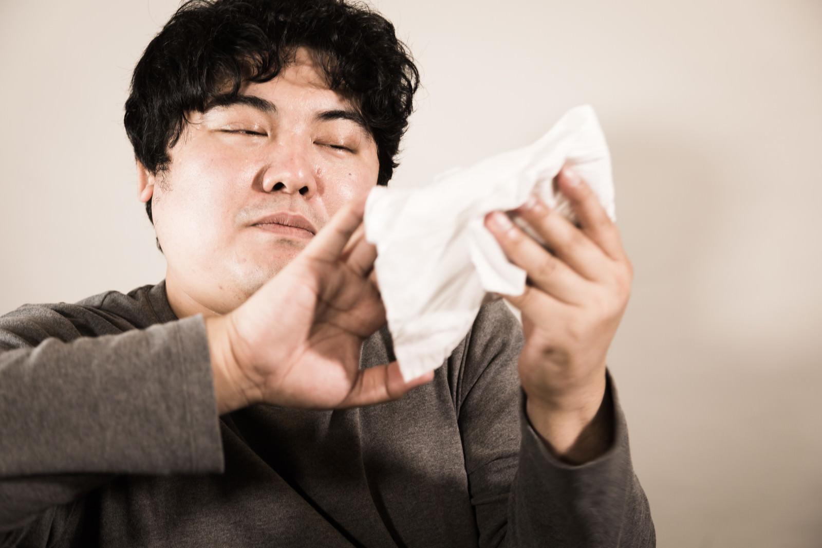 「布に包んだやわらかスマホ布に包んだやわらかスマホ」[モデル:段田隼人]のフリー写真素材を拡大